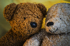 Two Teddy Bears Next to Each Other Royalty Free Stock Photography
