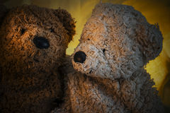 Two Teddy Bears Next to Each Other Royalty Free Stock Photo