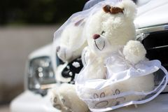 Two teddy bears - an ornament in front of car Royalty Free Stock Photos