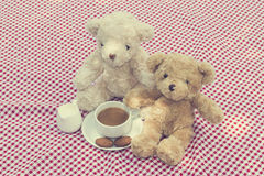 Two teddy bears picnic Royalty Free Stock Photo