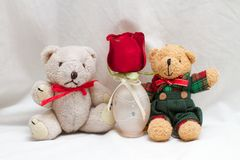Two Teddy Bears with a Red Rose showing their Friendship. Pair of cute little teddy bears that are best friends sitting together in a white background Stock Images