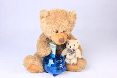 Two teddy bears saving money Royalty Free Stock Images