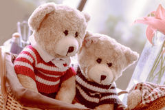 Two teddy bears sit in a basket with friends Royalty Free Stock Photo