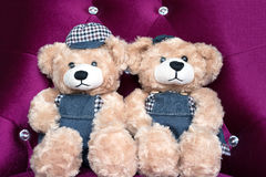 Two teddy bears on violet chair, concept love Stock Images