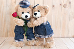 Two teddy bears on wood background Stock Image