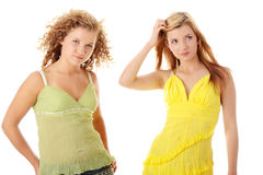 Two teen girlfriends Stock Photography