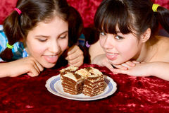 Two teen girls with cake. Two Lovely teen girls with cake royalty free stock photography