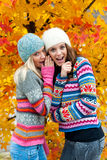 Two teen girls having fun Royalty Free Stock Photo