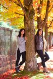 Two teen girls standing next to maple tree in autumn Royalty Free Stock Image