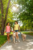 Two teenage girl walk dogs and talk Royalty Free Stock Photo