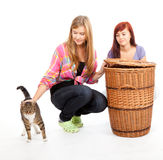 Two teenage girls  with cat Royalty Free Stock Image