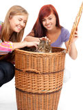 Two teenage girls  with cat Royalty Free Stock Images