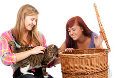 Two teenage girls  with cat Stock Photography