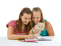 Two teenage girls and a cat paint Royalty Free Stock Images