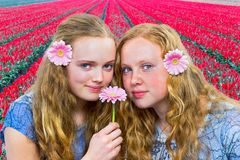 Two teenage girls in front of red tulip field. Two dutch teenage girls in front of red tulip field smelling pink gerbera Stock Image