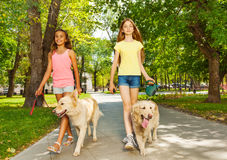 Two teenage girls walking with dogs in park. Two beautiful teenage girls walking their dogs in the park alley on sunny day Stock Photos