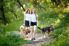 Two teenage girls walking with her dogs in park. Two smiling teenage girls walking with her dogs in spring park. Friendship concept background Stock Photos