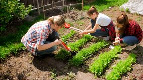 Free Two Teenage Girls With Mother Working In Garden Royalty Free Stock Images - 115048939