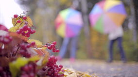 Two teenagers having fun with umbrellas in autumn park. Two teen girls playing with umbrellas in autumn park stock video