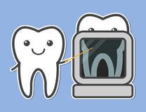 Two teeth demonstrated X-ray. Royalty Free Stock Photo