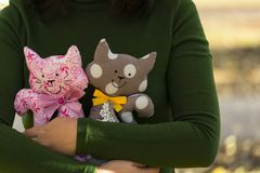 Two textile toys cat, sitting in female hands, arms hug cats, toys. The concept of family, the protection of animals stock image