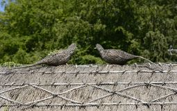 Two thatched sculptures on English cottage Stock Photo
