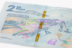Two Thousand Colombian Pesos Bill Royalty Free Stock Images