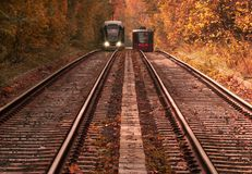 Two threads of tramways going away through magically beautiful autumn forest. stock photo
