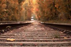 Railway going away trough beautiful autumn woods royalty free stock photo