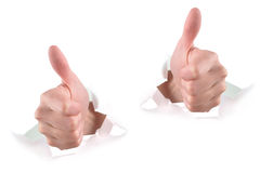 Two Thumbs Up on White. Two hands are ripping through white paper and giving thumbs up for approval. Use it for a fan, achievement or communication concept stock image