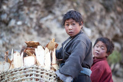 Two tibetan boys with basket Stock Images
