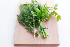 Two tied bunch of dill and parsley. On a light board royalty free stock photo