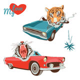 Two tiger designs Royalty Free Stock Photos