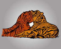 Two tiger lovers. Graphic picture of wild cats. Two tigers lie next to. Abstract colored drawing tiger on grey background, vector royalty free illustration