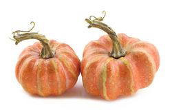 Two Tiny Pumpkins Stock Images