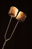 Two toasted Marshmallows. Two roasted marshmallow on a campfire fork with a black background Royalty Free Stock Images