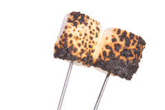 Two Toasted Marshmallows white background Royalty Free Stock Image