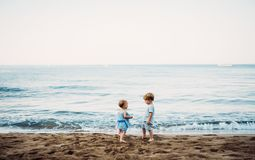 Two toddler children playing on sand beach on summer holiday. Two toddler children playing on sand beach on summer family holiday royalty free stock images