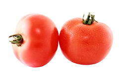 Two tomato  isolated on white background cutout Royalty Free Stock Images