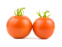 Two Tomatoes Royalty Free Stock Photo