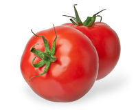 Two tomatoes Stock Images