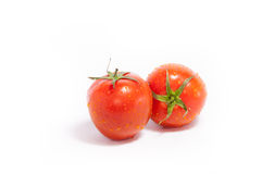Two tomatoes Royalty Free Stock Images