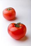 Two tomatoes. Two ripe red tomatoes on white background stock photo