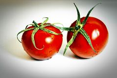 Two tomatoes. Two ripe tomatoes on white background royalty free stock photography
