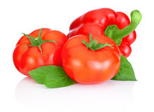 Two tomatoes, Sweet Red Peppers and leaves isolated on white b Stock Photography