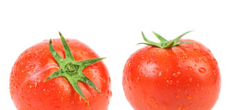 Two tomatoes with water drops. Stock Photos