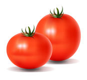 Two Tomatos Stock Photos