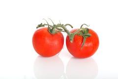 Two Tomatos Royalty Free Stock Photos