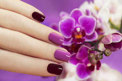 Two-tone fashion nails . stock photography