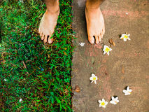 Two tone : Stone & Verdant. Two feet on different ground, a drought stony with Plumeria (Lanthom) and a green moist grass Stock Image